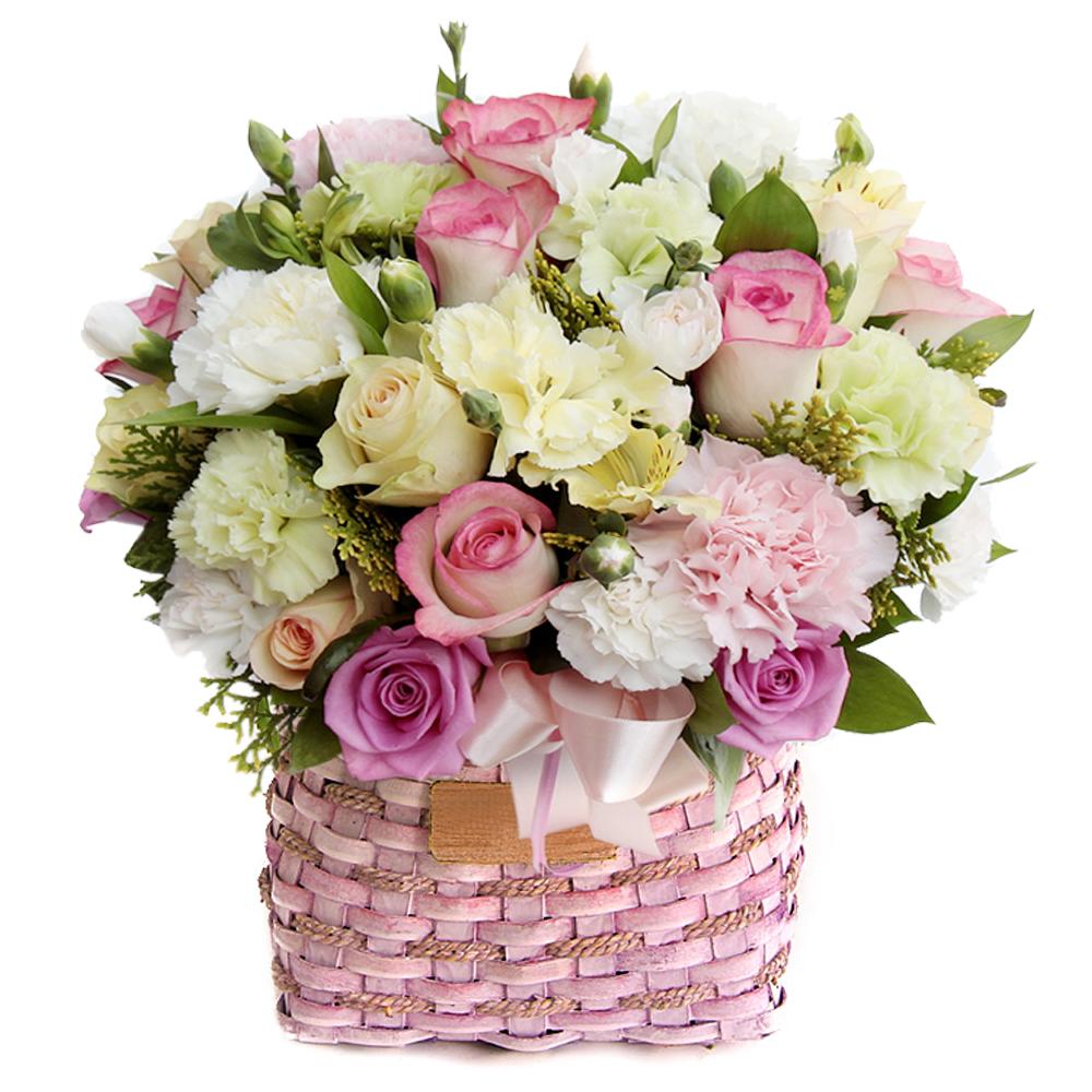 basket flower in Seoul Korea