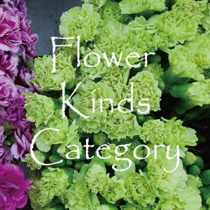 Flower kinds